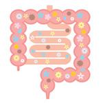 腸内フローラを整えて健康生活&ダイエット!まずは生活改善が大事